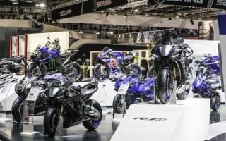 5 лучших снегоходов Yamaha — рейтинг 2020