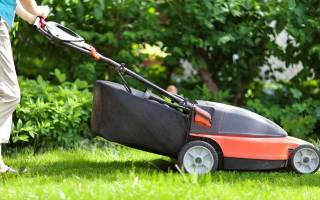 15 лучших производителей газонных трав – рейтинг 2020