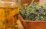 10 лучших чаев для лактации — рейтинг 2020