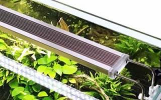10 лучших светильников для аквариума с АлиЭкспресс – рейтинг 2020