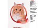 10 лучших глистогонных средств для собак и кошек — рейтинг 2020