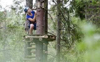5 лучших веревочных парков СПб – рейтинг 2020