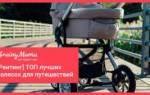 5 лучших колясок Yoyo – рейтинг 2020