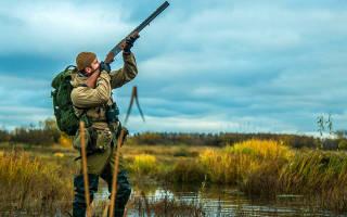 5 лучших прицелов для охоты — рейтинг 2020