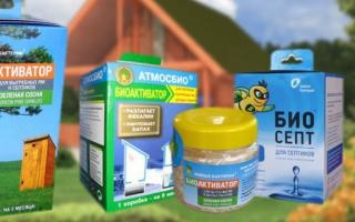 10 лучших производителей бактерий для септиков — рейтинг 2020