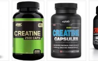 5 лучших добавок цитруллина — рейтинг 2020