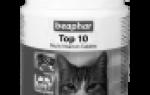 10 лучших витаминов для кошек — рейтинг 2020