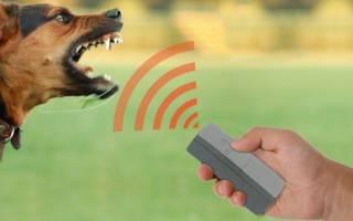 10 лучших отпугивателей собак – рейтинг 2020