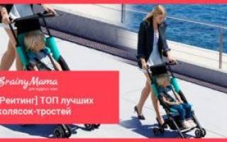 15 лучших колясок-тростей — рейтинг 2020
