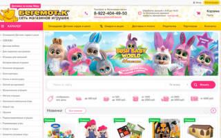 10 лучших интернет-магазинов детских игрушек – рейтинг (Топ-10)