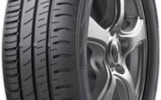 10 лучших шин Dunlop – рейтинг (Топ-10)